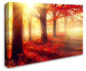 Red Autumn Forest Wall Art Canvas 8998-1026