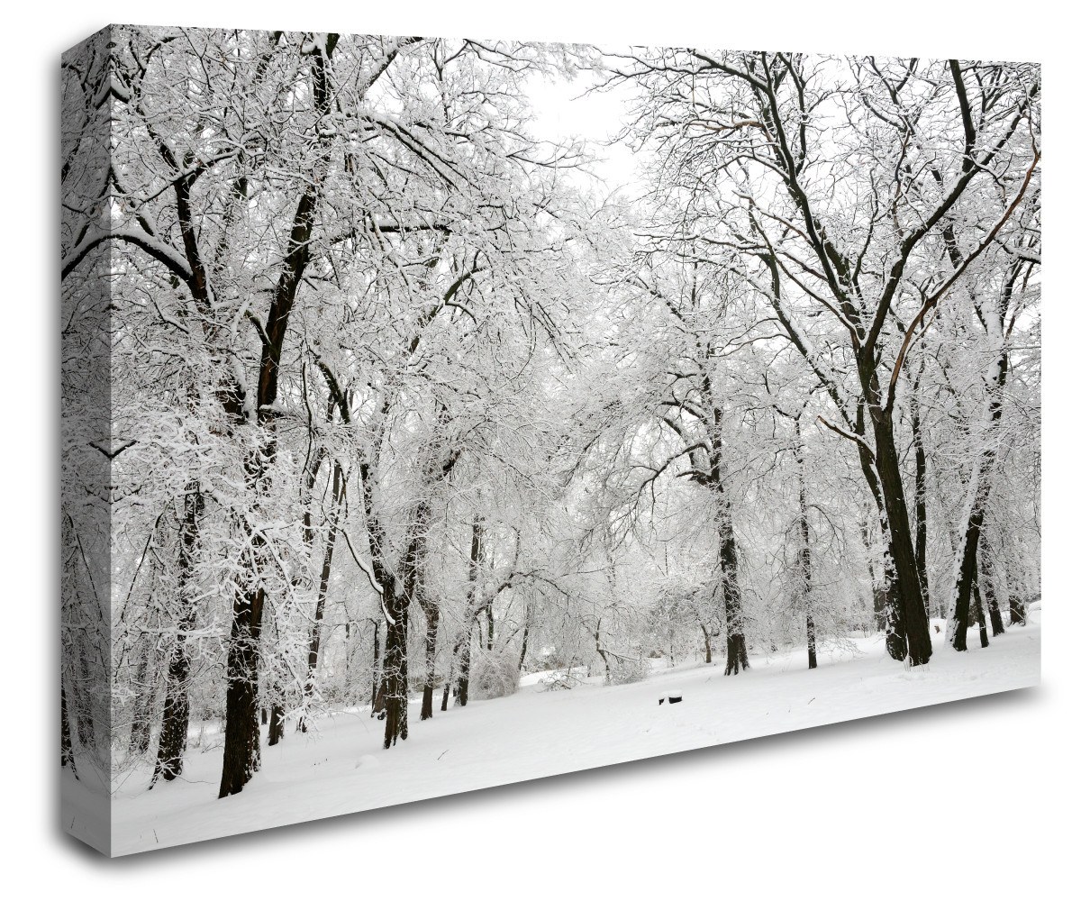b26d0c7df369 ... Winter Forest Trees Wall Art Canvas 8998-1028. Image 1. Loading zoom