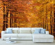 Autumn Forest Tree Wall Mural 2