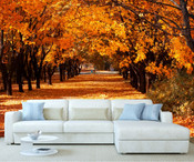 Autumn Forest Tree Wall Mural 4