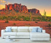 Canyon Wall Mural 8999-1093