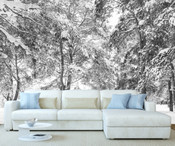 Winter Forest Trees Wall Mural 8999-1155
