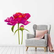 Flowers Wall Stickers 9120