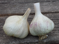 California Early Garlic Premium Label