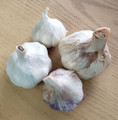 Inchelium Red Garlic Premium Label