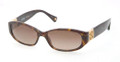 Coach 8012 Sunglasses 500113 Tortoise
