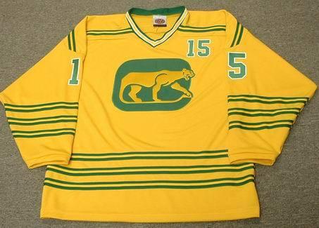 c8f9d441f ERIC NESTERENKO Chicago Cougars 1974 WHA Throwback Hockey Jersey - Custom  Throwback Jerseys