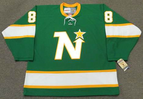 BILL GOLDSWORTHY Minnesota North Stars Jersey 1967 CCM Vintage Throwback NHL - FRONT