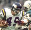 ED MARINARO Minnesota Vikings 1975 Away Throwback NFL Football Jersey - ACTION