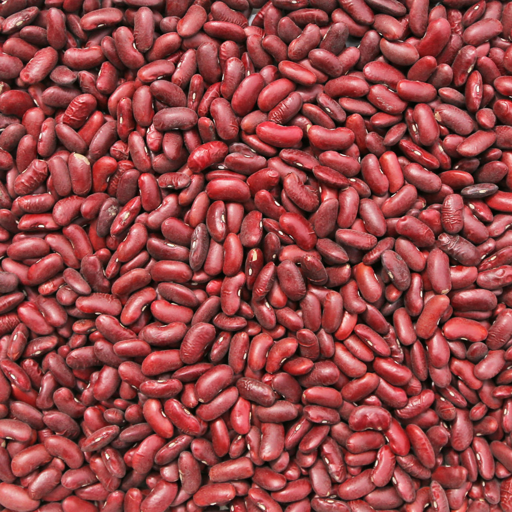 ORGANIC KIDNEY BEANS, dark red