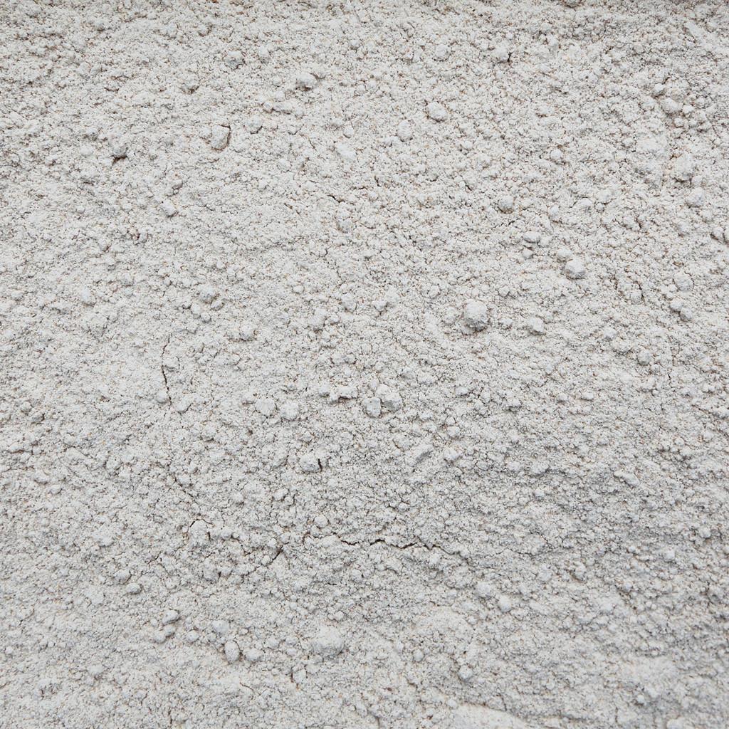 ORGANIC RED FIFE WHEAT, flour