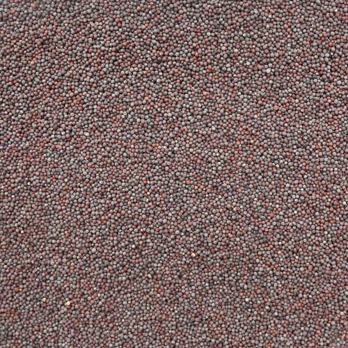 ORGANIC MUSTARD SEEDS, brown, whole
