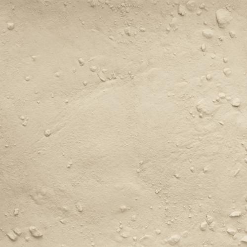 ORGANIC ONION, white, powder