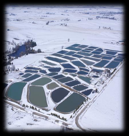 Winter_Aerial_Fuzzy.jpg