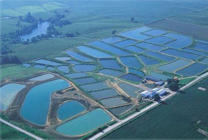 farm-aerial1-green.jpg