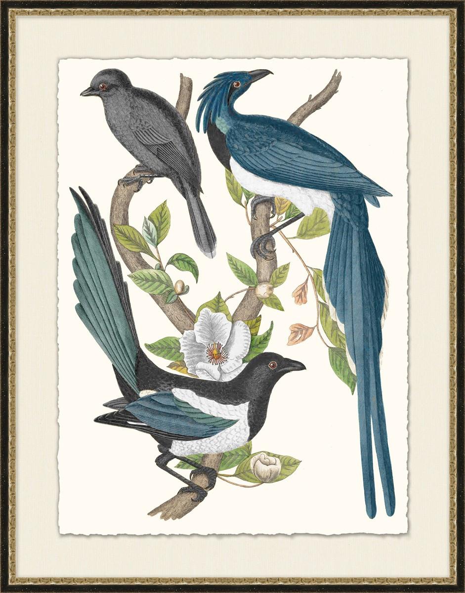 Blue Birds   Laura Ramsey Furniture & Interiors