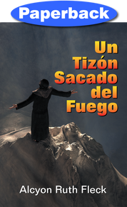 Cover of Brand from the Burning, A (Spanish)