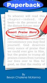 Insert Praise Here / McKenna, Bevan C / Paperback / LSI