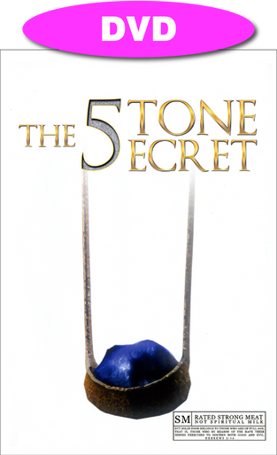 Cover of The Five Stone Secret