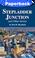 Cover of Stepladder Junction