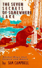 Seven Secrets of Somewhere Lake / Campbell, Sam A / Paperback / LSI