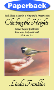 Cover of Climbing the Heights