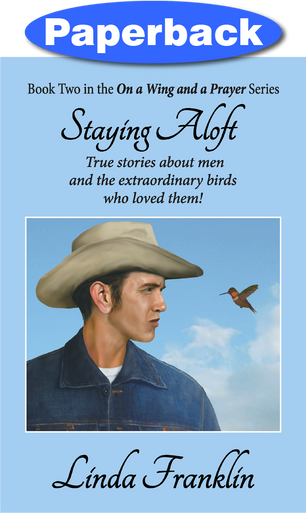 Cover of Staying Aloft