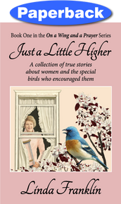 Cover of Just a Little Higher