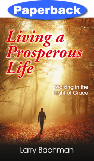 Cover of Living a Prosperous Life