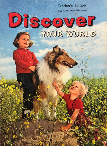 Cover of Discover Your World