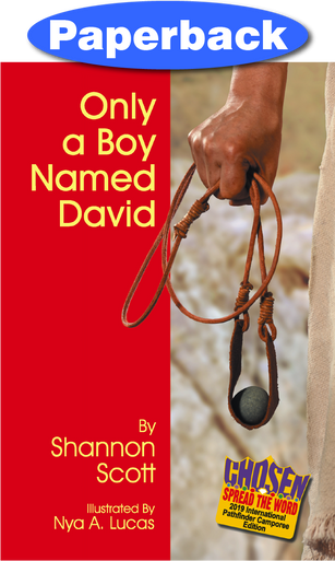 Cover of Only a Boy Named David