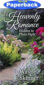 Cover of A Heavenly Romance