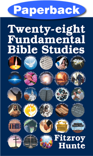 Front cover of Twenty-eight Fundamental Bible Studies