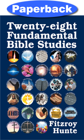 Front cover of Twenty-eight Fundamental Bible Studies