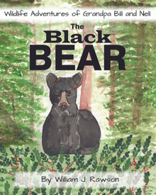 Black Bear, The / Rawson, William J. / Paperback / LSI