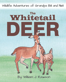 Whitetail Deer, The / Rawson, William J. / Paperback / LSI