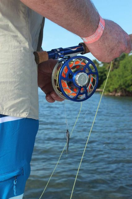 reef-blue-crush-reef fly rod combination