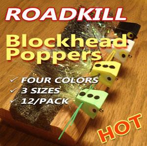 roadkillplacard300.jpg
