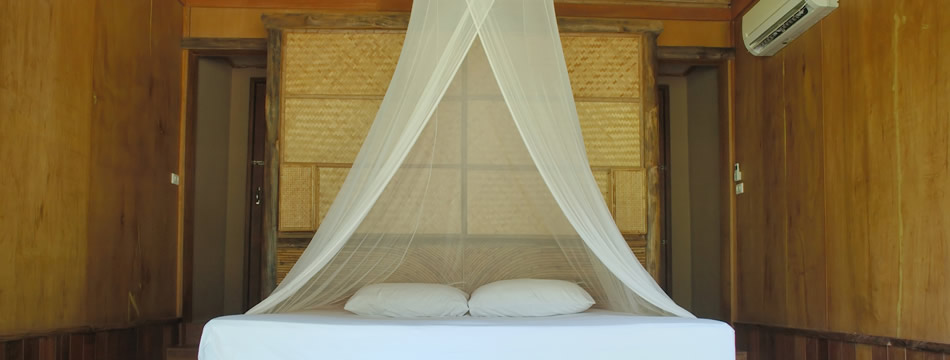 Mosquito netting for beds from the online mosquito netting for Bed with mosquito net decoration