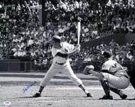 Stan Musial Autographed 16x20 Photo St. Louis Cardinals PSA/DNA Stock #18611