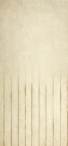 Vanilla  faded backdrop with texture added  wood effect  photographers backdrop. 02