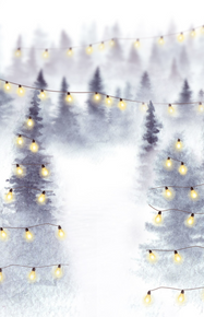whimsical winter scene with lights