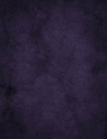 gorgeous dark purple photography backdrop