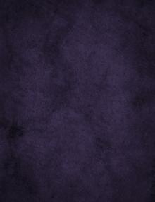 gorgeous dark purple photography backdrop