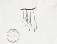 a gorgeous simple rustic white wall and twig and green foliage backdrop