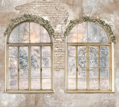 Vintage white room 001  two windows with pretty winter Christmas view