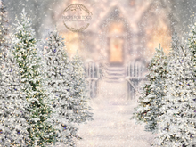 Beautiful magical white sparkle christmasy  scene