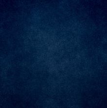 Navy blue textured backdrop