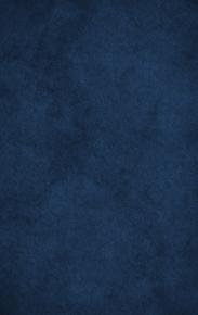 a textured blue fine art backdrop
