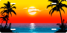 Full Color Palms Beach Scenic Auto Plate sku T2025F